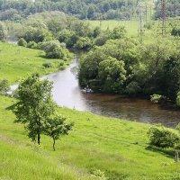 Река Протва (5997) :: Виктор Мушкарин (thepaparazzo)