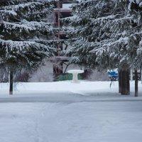 Зима в городе :: Ника -