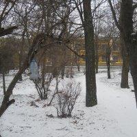 В парке. :: Галина