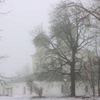 Туманный зимний день в Антоново. :: Алексей Баринов
