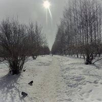 Календарная весна :: gribushko грибушко Николай