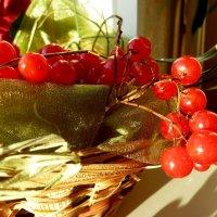 Ах, калина красная, как сердце ты пленяешь!... :: Лидия Бараблина