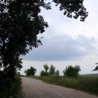 В путь  дорогу.... :: Светлана Z.