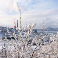 Зимний вид из окна :: Сергей Ш.