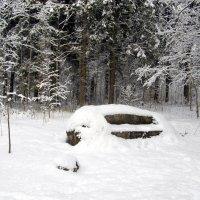 Нет даже малейшего намёка на таяние снега. 20 марта... :: Лия ☼