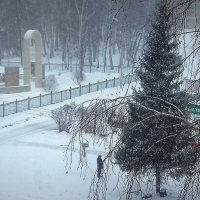 А человек ждёт ...в любую погоду ! :: Мила Бовкун