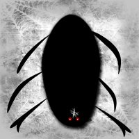 паук и паутина :: Юлия Денискина