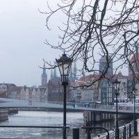Гданьск.Весенний туман :: Светлана Павловская