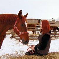 Разговор с лошадью :: Юлия Ошуркова