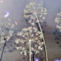 Вечные цветы :: Mir-Tash
