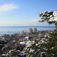 Два дня со снегом :: Константин Виниченко
