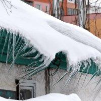 Когтистая лапа зимы :: Леонид Иванчук