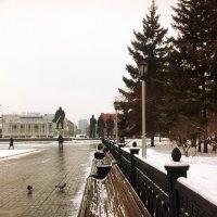 Прогулка по Новосибирску :: Света Кондрашова