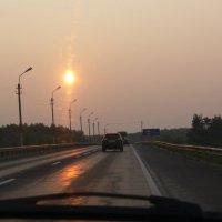 Дорога в лучах заходящего солнца :: Анжела