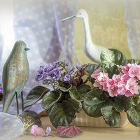Когда приходит весна... :: Bosanat