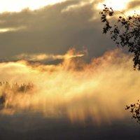 Противление тумана восходящему солнцу :: Сергей Чиняев