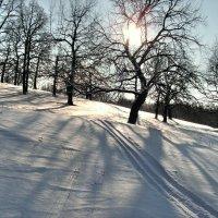По искристому снежку едем мы под горку... :: Андрей Заломленков