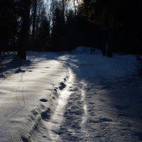 Дорожка :: Сергей Кунаев