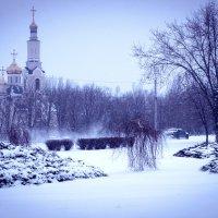 В природе всё перевернулось, Весной опять зима вернулась... :: Людмила