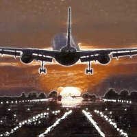 Ваш полет, моя аранжировка. :: irina Schwarzer