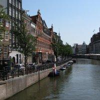 Амстердам :: Grey Bishop