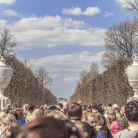 Весенняя прогулка в Петергофе. Народ тянется к прекрасному :) :: bajguz igor