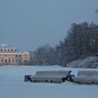 Елагин дворец :: skijumper Иванов