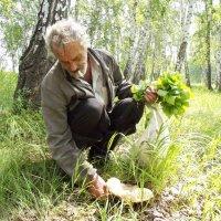 В лесу :: Светлана Рябова-Шатунова