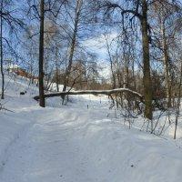 Март на Воробьёвых горах :: Татьяна Лобанова