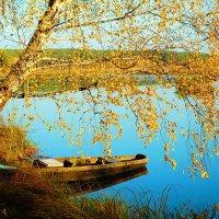 поздняя осень :: Александр