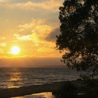 Сентябрьский залив :: Aнна Зарубина