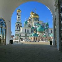 Г.Истра Ново Иерусалимский монастырь :: ninell nikitina