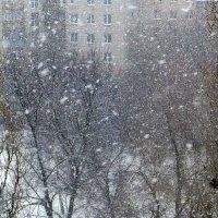 Снегопад :: Raduzka (Надежда Веркина)