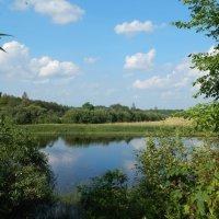 Два берега у одной реки :: Светлана Z.