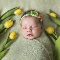 Дети цветы жизни! :: Евгения К