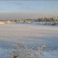 Замерзший пруд :: lady v.ekaterina
