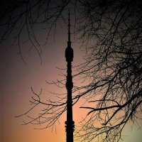 Закат в Останкино :: Ирина Via