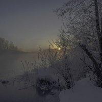 Зимний туман :: Александра