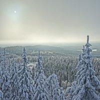 Солнце и сопки. Финляндия :: Алексей Саломатов