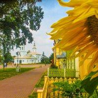 Кремлевская площадь :: Юрий Слепчук