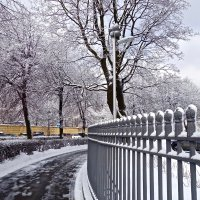 март в городе :: Елена