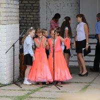 Маленькие сплетницы. :: Владимир Усачёв