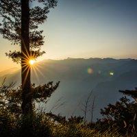 Alishan Top/Sunrise :: Alena Kramarenko