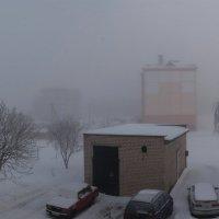 Морозный утренний туман :: Анатолий Клепешнёв