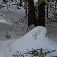 снегурочка :: sv.kaschuk