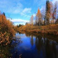 Осень :: Василий