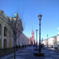 Вид на Городскую Думу. (Санкт-Петербург). :: Светлана Калмыкова
