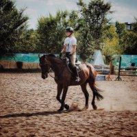 Конный спорт :: Анастасия Косьмина