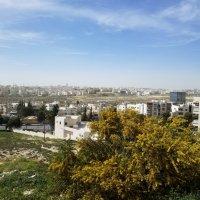 Амман.Современная часть города. :: Жанна Викторовна