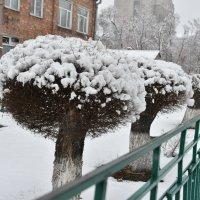Зимний последний ! :: юрий Амосов